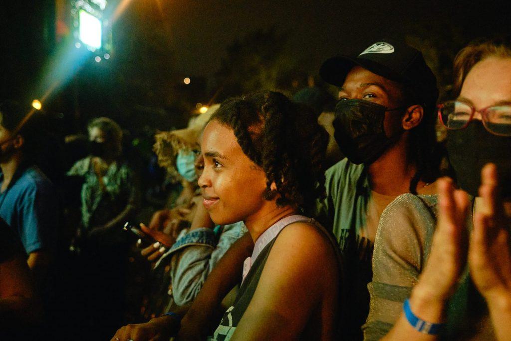erykah-badu-crowd-p4k-festival